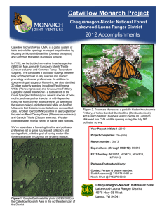 Title text here  Catwillow Monarch Project 2012 Accomplishments