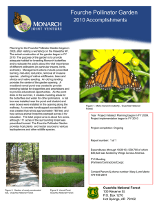 Title text here Fourche Pollinator Garden 2010 Accomplishments