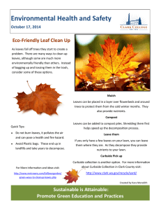 Environmental Health and Safety Eco-Friendly Leaf Clean Up October 17, 2014