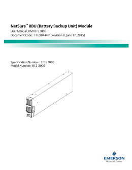 NetSure BBU (Battery Backup Unit) Module
