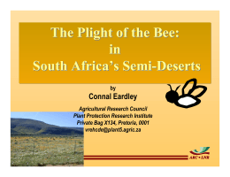 The Plight of the Bee: in South Africa's Semi-Deserts Connal Eardley