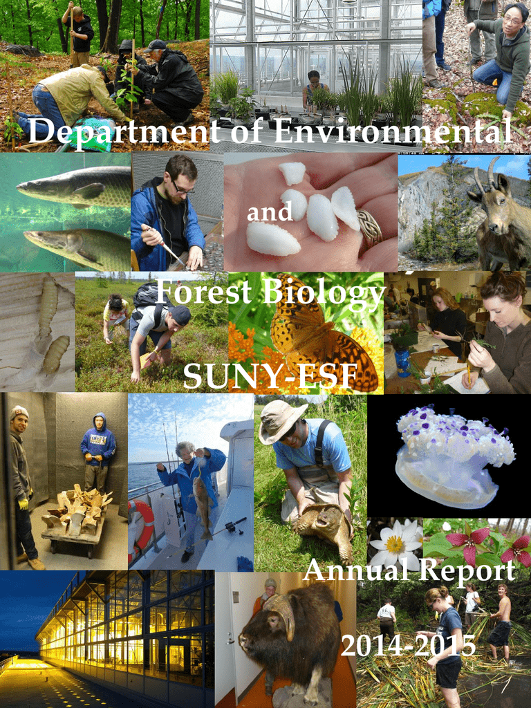 Department of Environmental Forest Biology SUNY-ESF