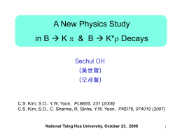 A New Physics Study p &  B  K*r Decays
