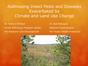 Addressing Insect Pests and Diseases Exacerbated by Climate and Land Use Change