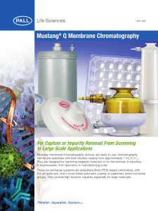Mustang Q Membrane Chromatography For Capture or Impurity Removal From Screening