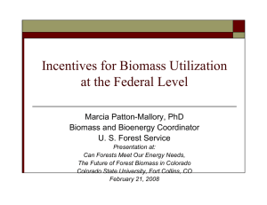 Incentives for Biomass Utilization at the Federal Level Marcia Patton-Mallory, PhD