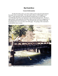 Big Wood River General Information