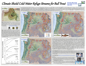 Climate Shield Cold - Water Refuge Streams for Bull Trout