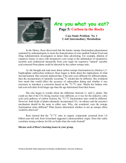 Are you what you eat? Page 5: Carbon in the Rocks