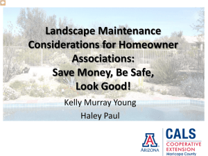 Landscape Maintenance Considerations for Homeowner Associations: Save Money, Be Safe,