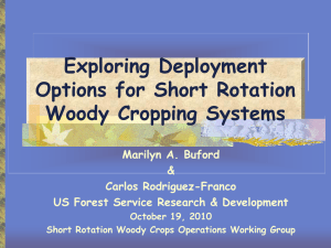 Exploring Deployment Options for Short Rotation Woody Cropping Systems Marilyn A. Buford