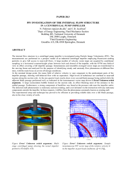 PAPER 28.3 PIV INVESTIGATION OF THE INTERNAL FLOW STRUCTURE