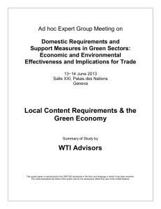 Ad hoc Expert Group Meeting on Domestic Requirements and Economic and Environmental