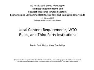 Ad hoc Expert Group Meeting on Domestic Requirements and