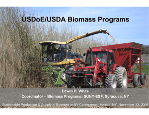 USDoE/USDA Biomass Programs Edwin H. White