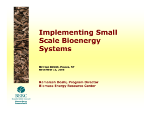 Implementing Small Scale Bioenergy Systems Kamalesh Doshi, Program Director