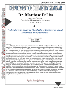 "Dr. Matthew DeLisa  ""Adventures in Bacterial Glycobiology: Engineering Sweet"