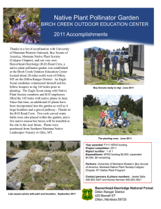 Native Plant Pollinator Garden Title text here  2011 Accomplishments