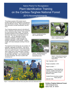 Title text here Plant Identification Training on the Caribou-Targhee National Forest 2010 Accomplishments