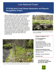 Lolo National Forest Title text here Revegetation Project