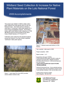 Wildland Seed Collection & Increase for Native Title text here