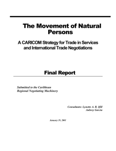The Movement of Natural Persons Final Report