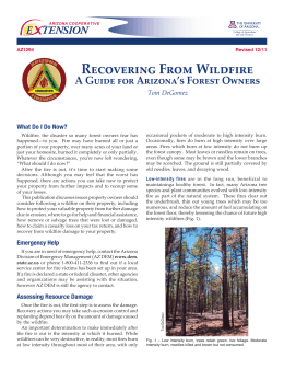 Recovering From Wildfire A Guide for Arizona's Forest Owners Tom DeGomez