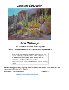 Christine Debrosky Arid Pathways An exhibition of desert forms in pastel