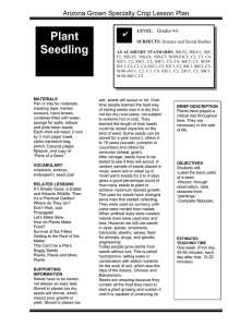 Plant Seedling Arizona Grown Specialty Crop Lesson Plan