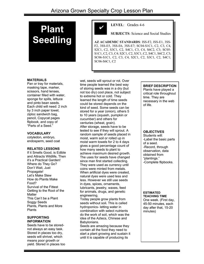 Plant Seedling Arizona Grown Specialty Crop Lesson Plan