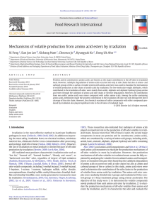 Mechanisms of volatile production from amino acid esters by irradiation ⁎ ,