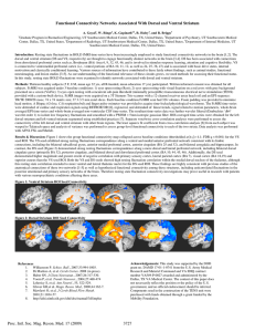 Functional Connectivity Networks Associated With Dorsal and Ventral Striatum