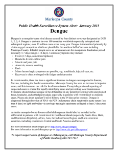 Dengue Public Health Surveillance System Alert:  January 2015