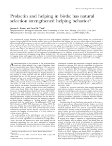 Prolactin and helping in birds: has natural selection strengthened helping behavior?