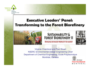 Executive Leaders' Panel: Transforming to the Forest Biorefinery