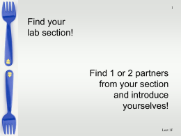 Find your lab section! Find 1 or 2 partners from your section