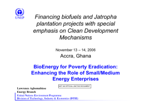 Financing biofuels and Jatropha plantation projects with special emphasis on Clean Development Mechanisms