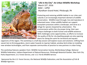"Life In the City"": An Urban Wildlife Workshop  March 15 , 2016"