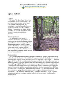 Upland Habitat Kasey Hartz Natural Area Reference Sheet