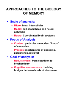 APPROACHES TO THE BIOLOGY OF MEMORY Scale of analysis: Focus of Analysis: