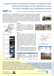 Long term beach nourishment impacts in interaction with