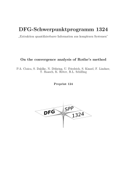 DFG-Schwerpunktprogramm 1324 On the convergence analysis of Rothe's method