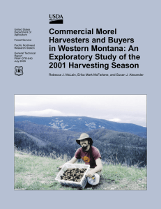 Commercial Morel Harvesters and Buyers in Western Montana: An Exploratory Study of the