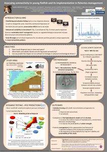 Assessing connectivity in young flatfish and its implementation in fisheries...