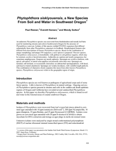 Phytophthora siskiyouensis From Soil and Water in Southwest Oregon  Paul Reeser,