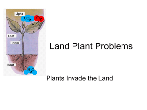 Land Plant Problems Plants Invade the Land