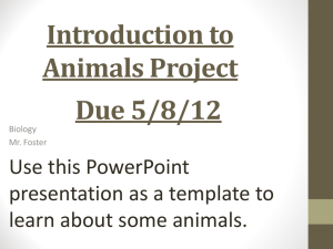 Introduction to Animals Project Due 5/8/12 Use this PowerPoint