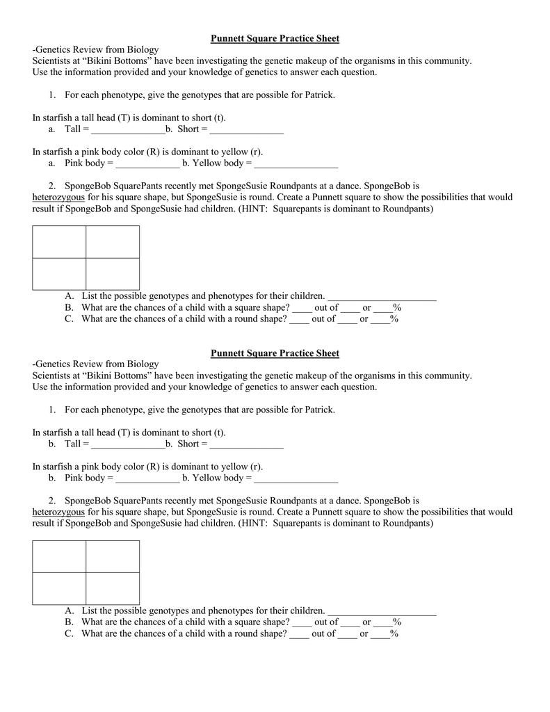Punnett Square Practice Sheet Genetics Review from Biology – Spongebob Punnett Square Worksheet