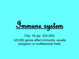 Immune system Chp. 16 (pp. 323-350) ~20,000 genes affect immunity, usually