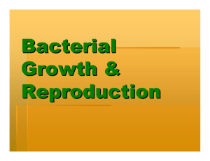 Bacterial Growth & Reproduction